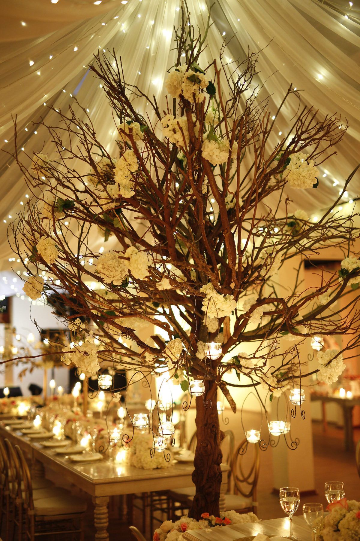 diastole y sistole, fotografia de boda, decoracion con árbol, árbol en la decoracion, decoration with tree, arbor iluminado,